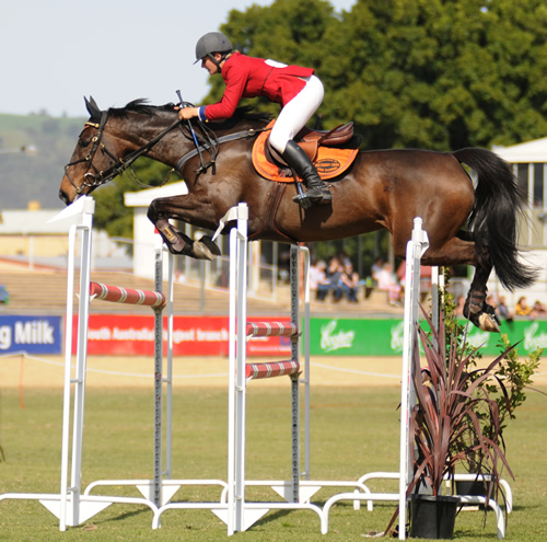 open horse jumping